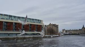 เอดินเบิร์ก สก๊อตแลนด์ (Water of Leith, Edinburgh winter 2010)
