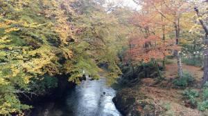 สก๊อตแลนด์ (Mountain Area, Scotland)